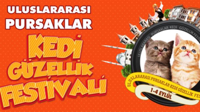 Pursaklar da Festival Başlıyor
